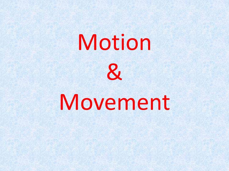 Motion & Movement