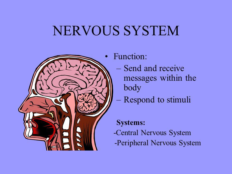Citations Neurons: Nerve Cells.Cochran, 1993. Video Segment.