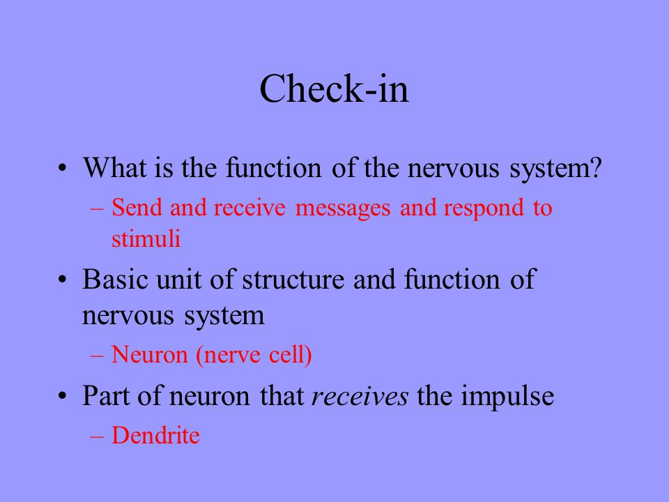 Check-in What is the function of the nervous system? –Send and receive messages and respond to stimuli Basic unit of structure and function of nervous