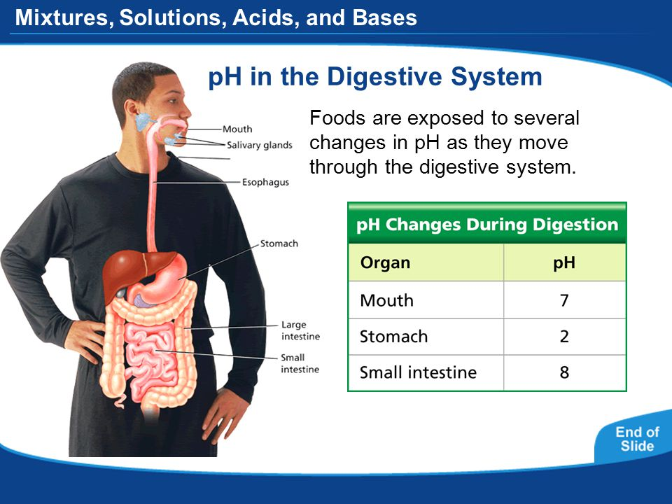 Mixtures, Solutions, Acids, and Bases pH in the Digestive System Foods are exposed to several changes in pH as they move through the digestive system.