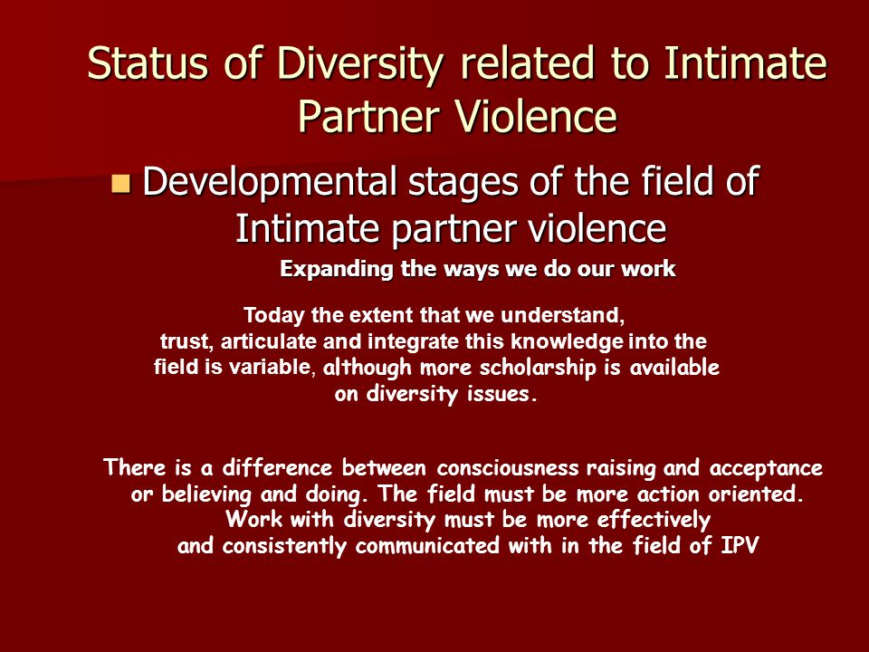 Status of Diversity related to Intimate Partner Violence Developmental stages of the field of Intimate partner violence Developmental stages of the field of Intimate partner violence Expanding the ways we do our work Expanding the ways we do our work Today the extent that we understand, trust, articulate and integrate this knowledge into the field is variable, although more scholarship is available on diversity issues.
