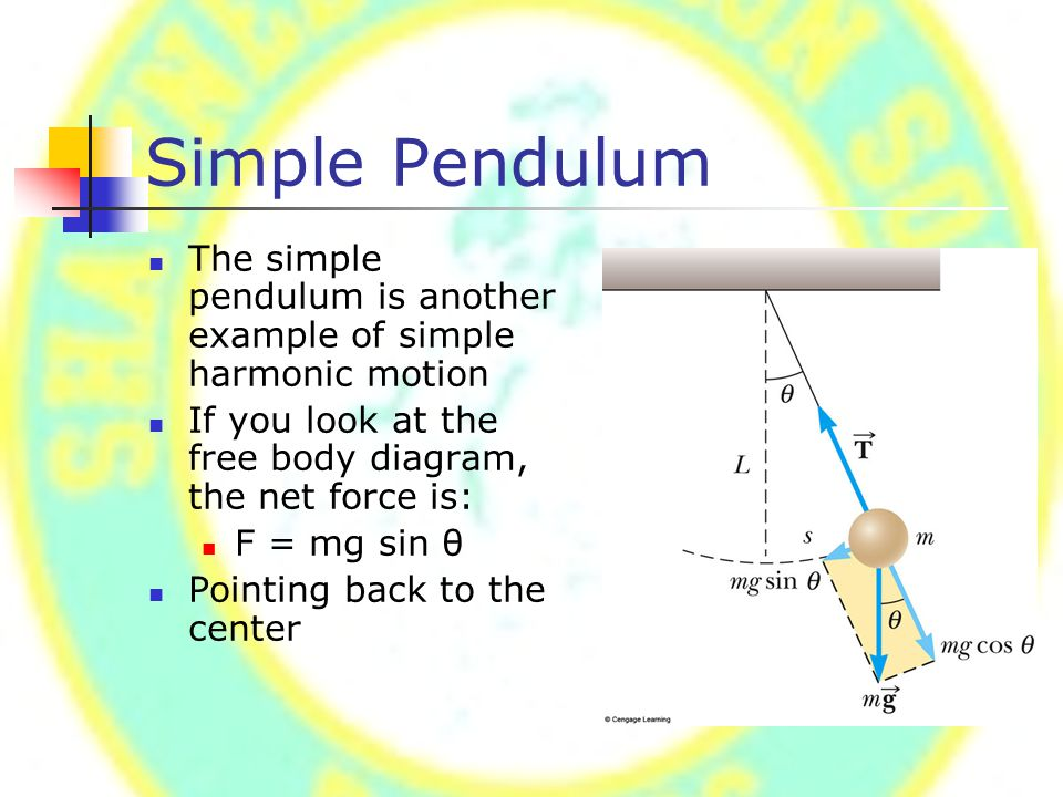 Simple Pendulum The simple pendulum is another example of simple harmonic motion If you look at the free body diagram, the net force is: F = mg sin θ Pointing back to the center