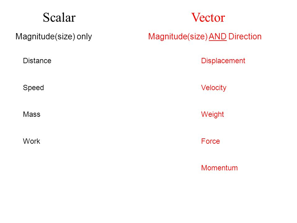 Scalar Vector Magnitude(size) only Magnitude(size) AND Direction DistanceDisplacement SpeedVelocity MassWeight WorkForce Momentum
