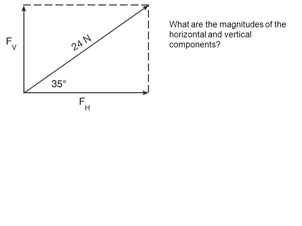 What are the magnitudes of the horizontal and vertical components?
