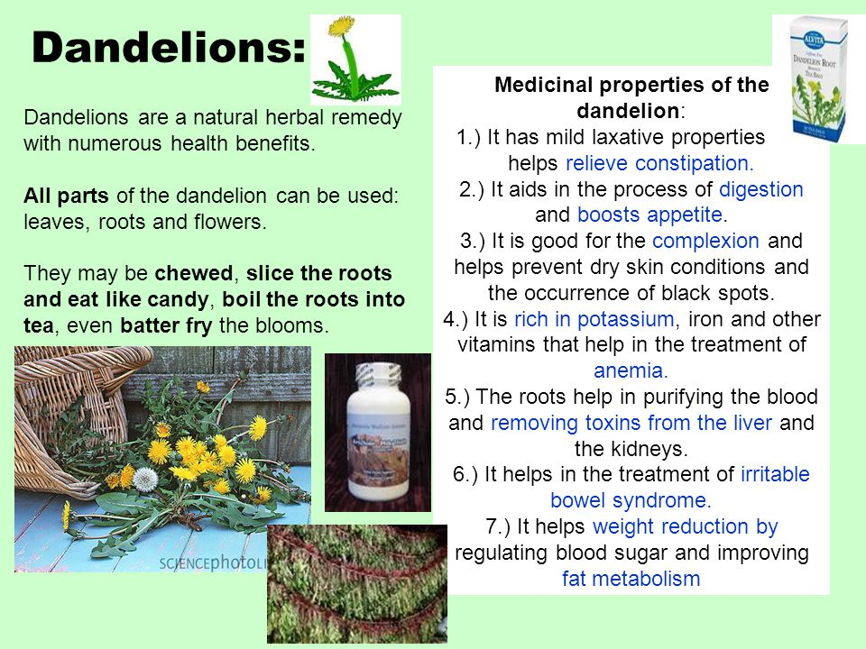 Dandelions: Dandelions are a natural herbal remedy with numerous health benefits.