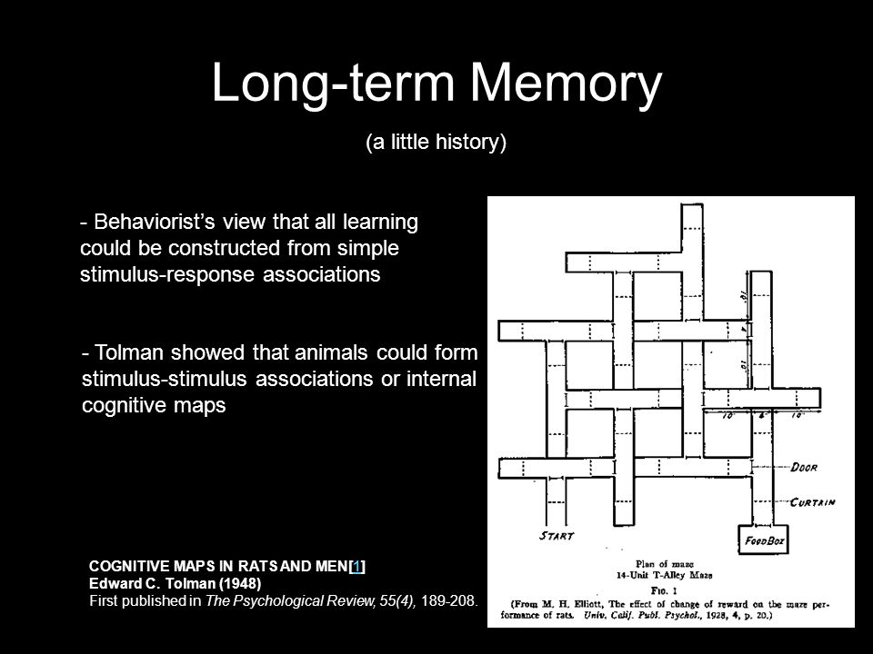 Long-term Memory - Behaviorist's view that all learning could be constructed from simple stimulus-response associations - Tolman showed that animals could form stimulus-stimulus associations or internal cognitive maps (a little history) COGNITIVE MAPS IN RATS AND MEN[1] Edward C.