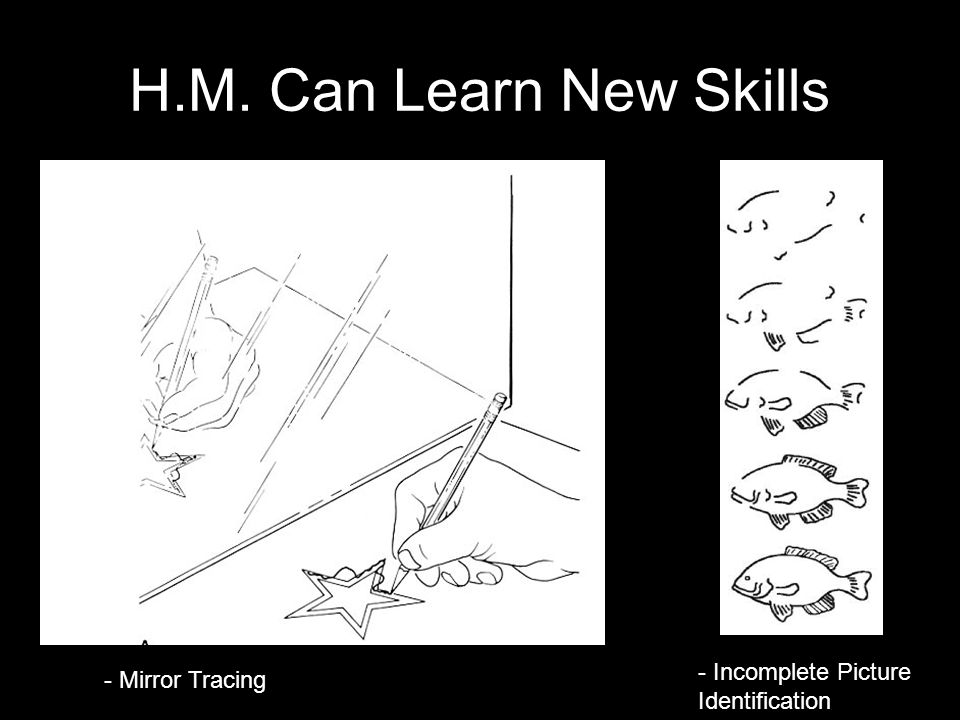 H.M. Can Learn New Skills - Mirror Tracing - Incomplete Picture Identification
