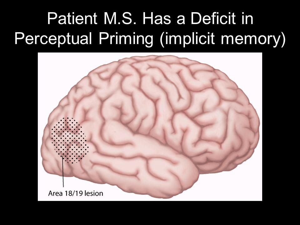 Patient M.S. Has a Deficit in Perceptual Priming (implicit memory)