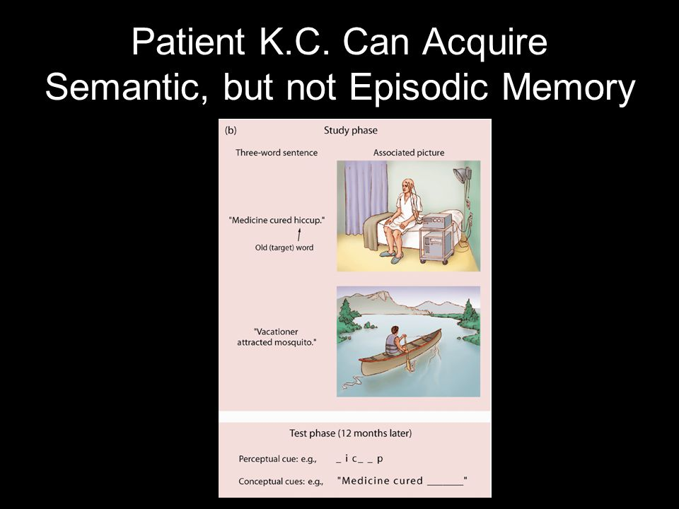 Patient K.C. Can Acquire Semantic, but not Episodic Memory
