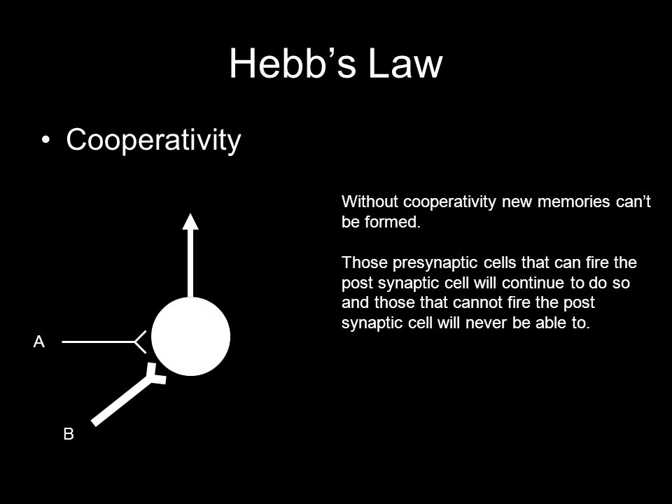Hebb's Law Cooperativity Without cooperativity new memories can't be formed.