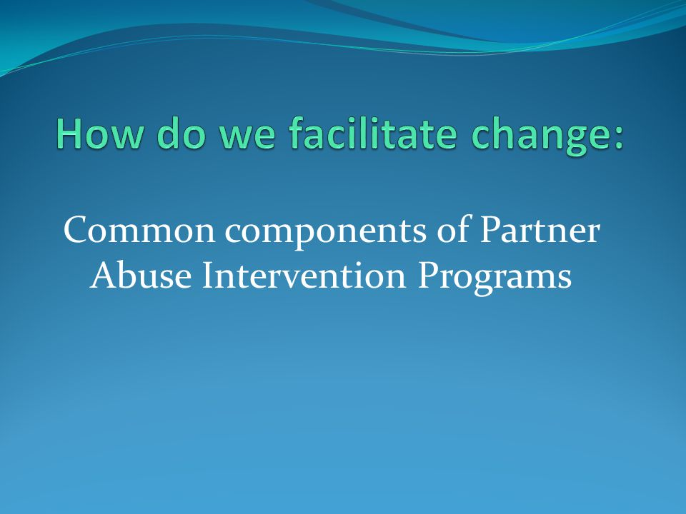 Common components of Partner Abuse Intervention Programs