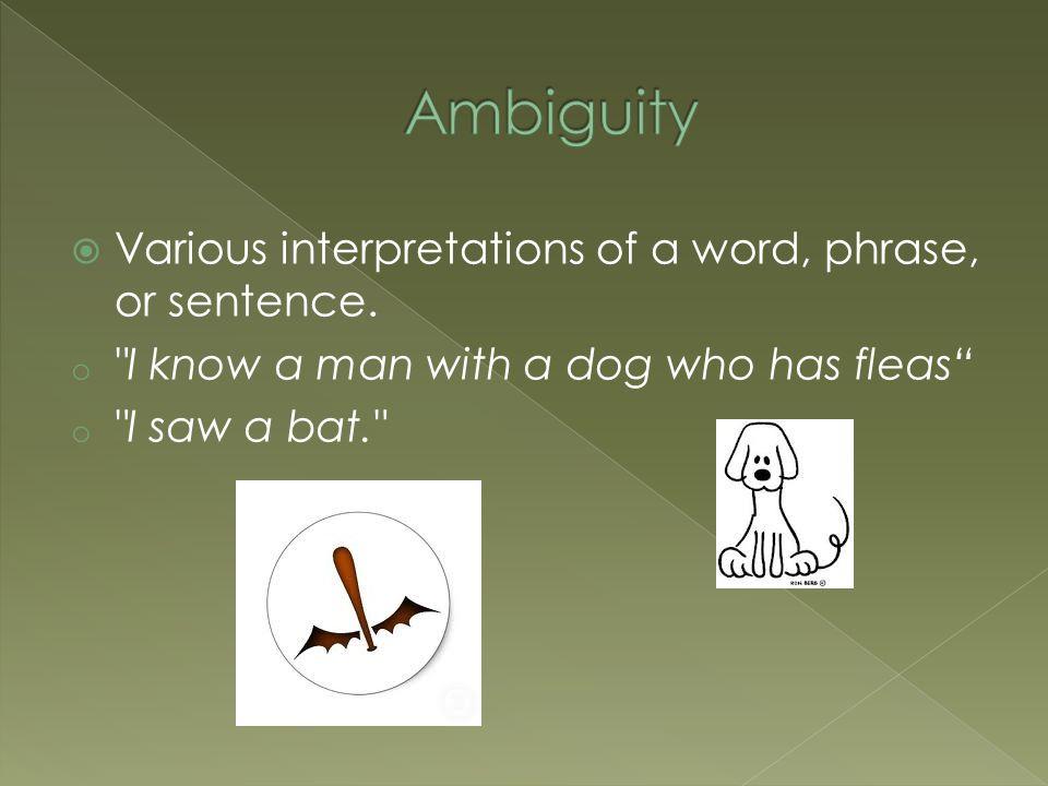  Various interpretations of a word, phrase, or sentence.