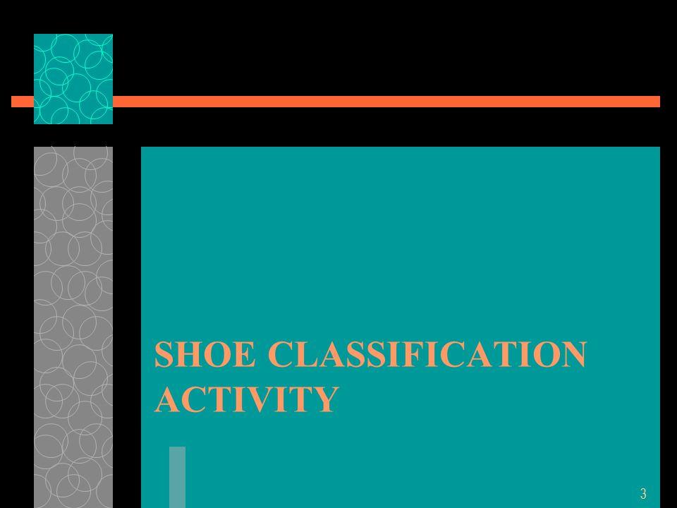 SHOE CLASSIFICATION ACTIVITY 3