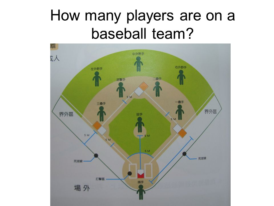 catcher pitcher left fielder center fielder right fielder first baseman second baseman third baseman short stop