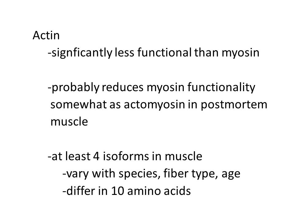 Actin -signficantly less functional than myosin -probably reduces myosin functionality somewhat as actomyosin in postmortem muscle -at least 4 isoform