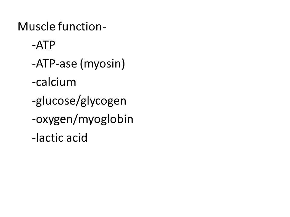 Muscle function- -ATP -ATP-ase (myosin) -calcium -glucose/glycogen -oxygen/myoglobin -lactic acid