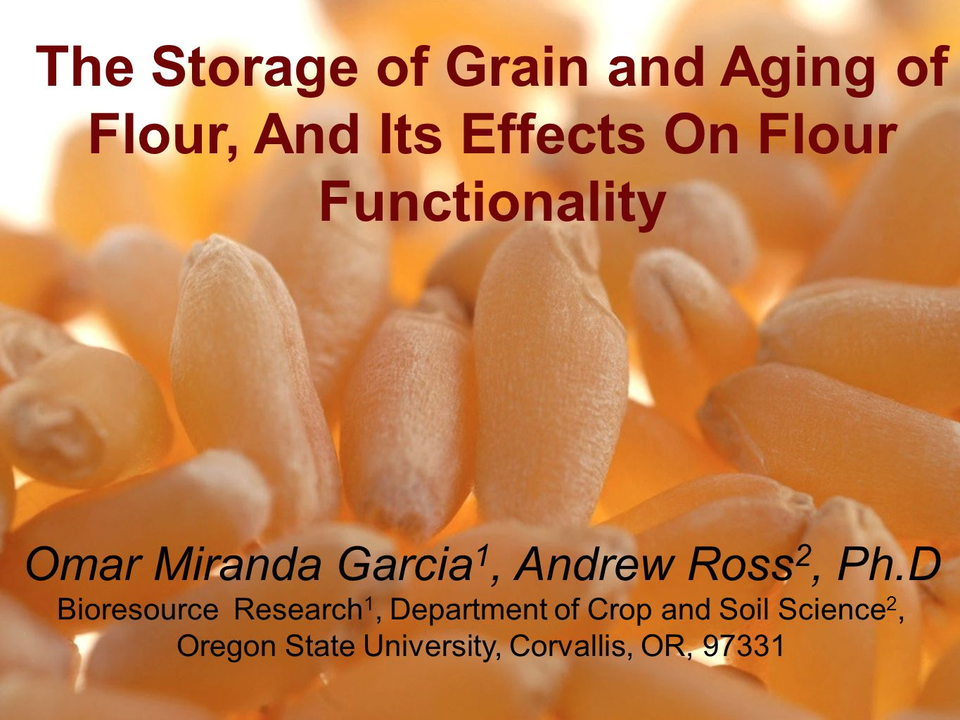 The Storage of Grain and Aging of Flour, And Its Effects On Flour Functionality Omar Miranda Garcia 1, Andrew Ross 2, Ph.D Bioresource Research 1, Department of Crop and Soil Science 2, Oregon State University, Corvallis, OR, 97331