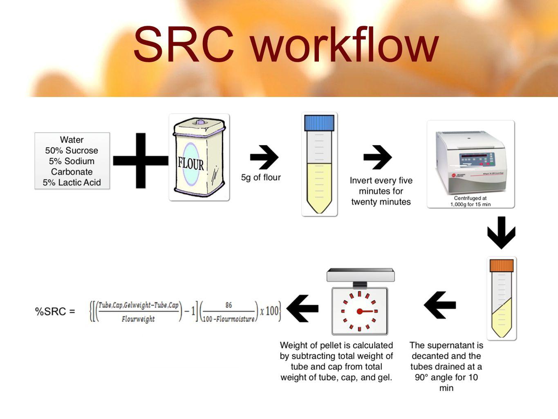 6 30 SRC workflow