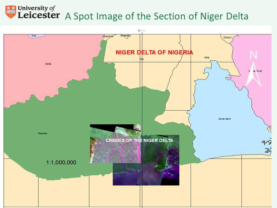 A Spot Image of the Section of Niger Delta