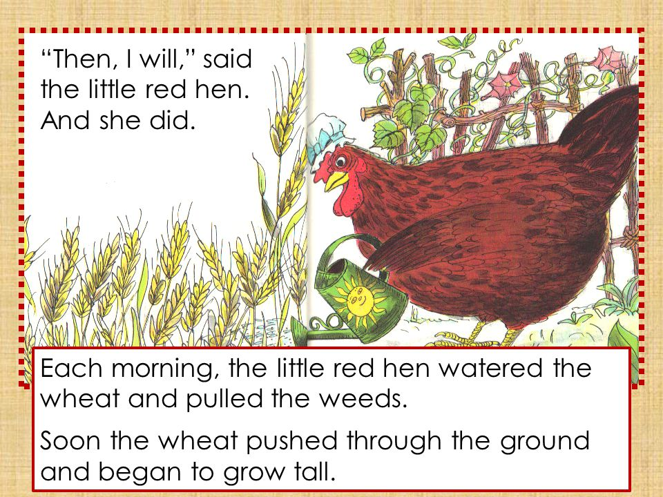 When the wheat was ripe, the little red hen asked, Who will cut this wheat? said the cat.