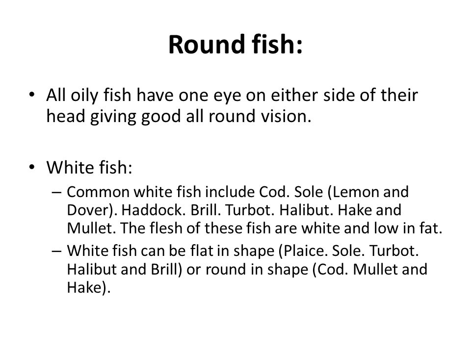 Round fish: All oily fish have one eye on either side of their head giving good all round vision.