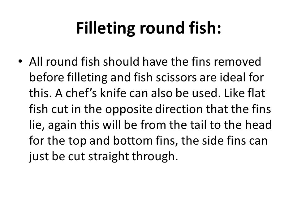 Filleting round fish: All round fish should have the fins removed before filleting and fish scissors are ideal for this.