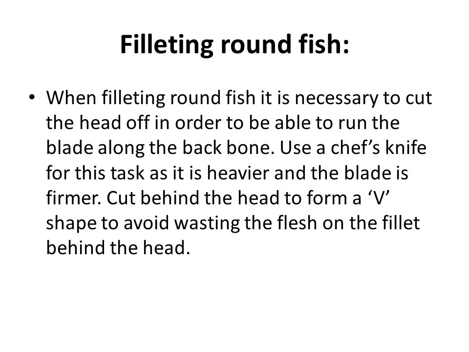 Filleting round fish: When filleting round fish it is necessary to cut the head off in order to be able to run the blade along the back bone.
