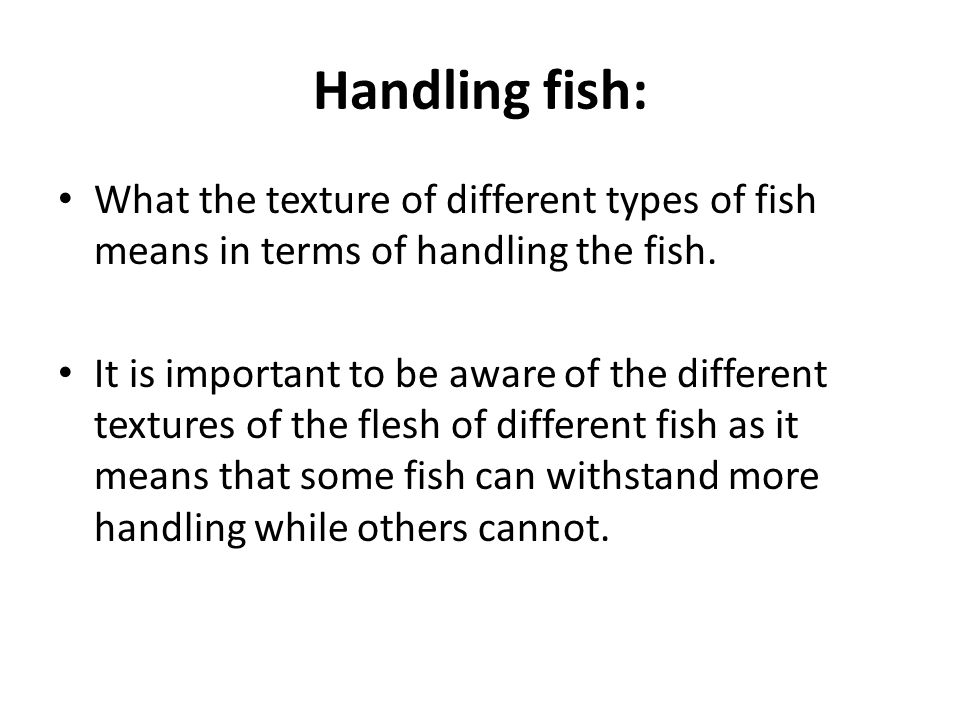 Handling fish: What the texture of different types of fish means in terms of handling the fish.