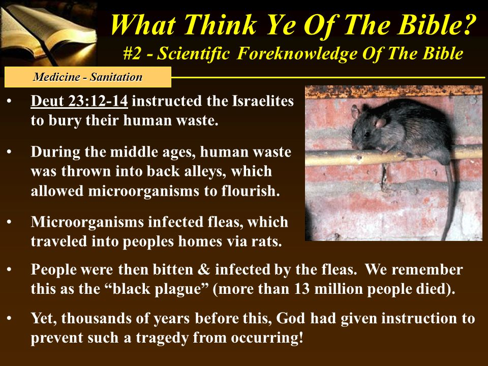 What Think Ye Of The Bible? #2 - Scientific Foreknowledge Of The Bible Deut 23:12-14 instructed the Israelites to bury their human waste. During the m