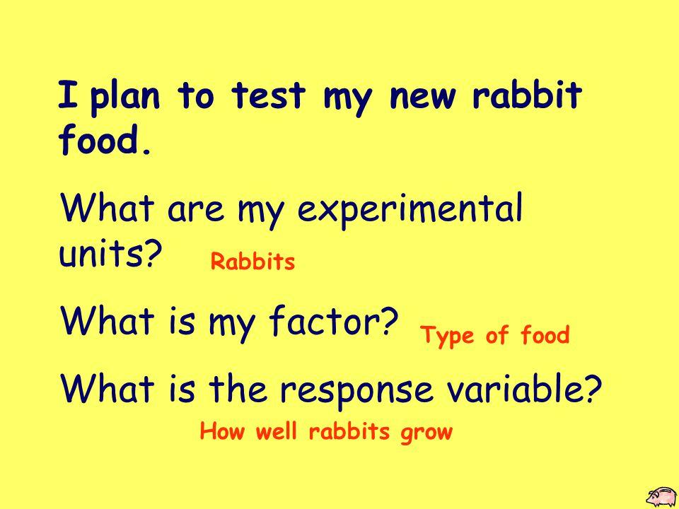 Hippity Hop I'll use my pet rabbit, Bunny.