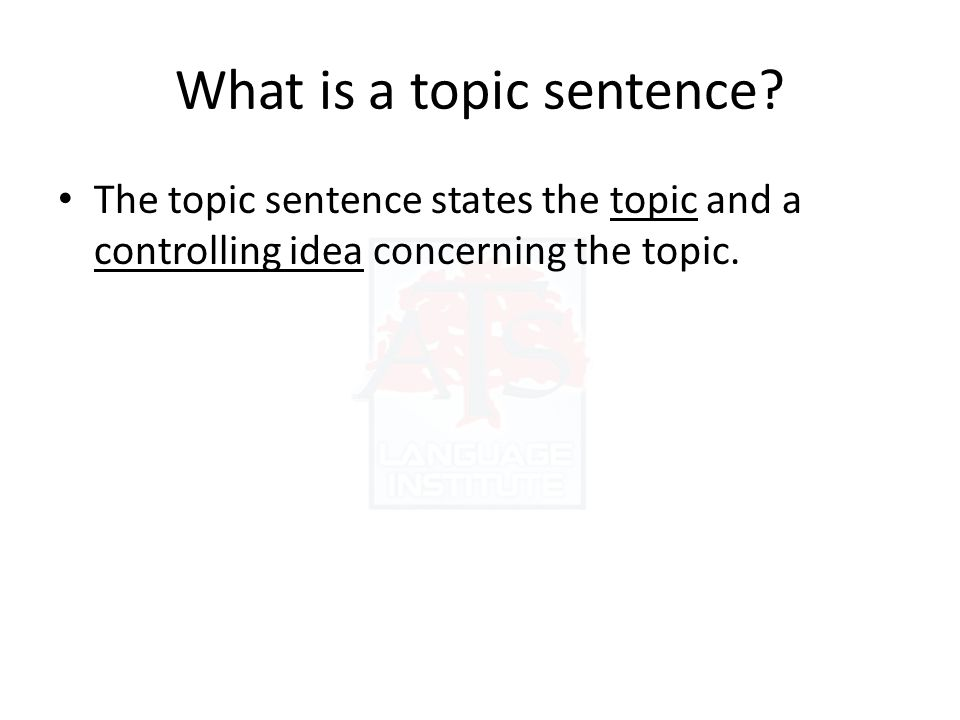 What is a topic sentence.