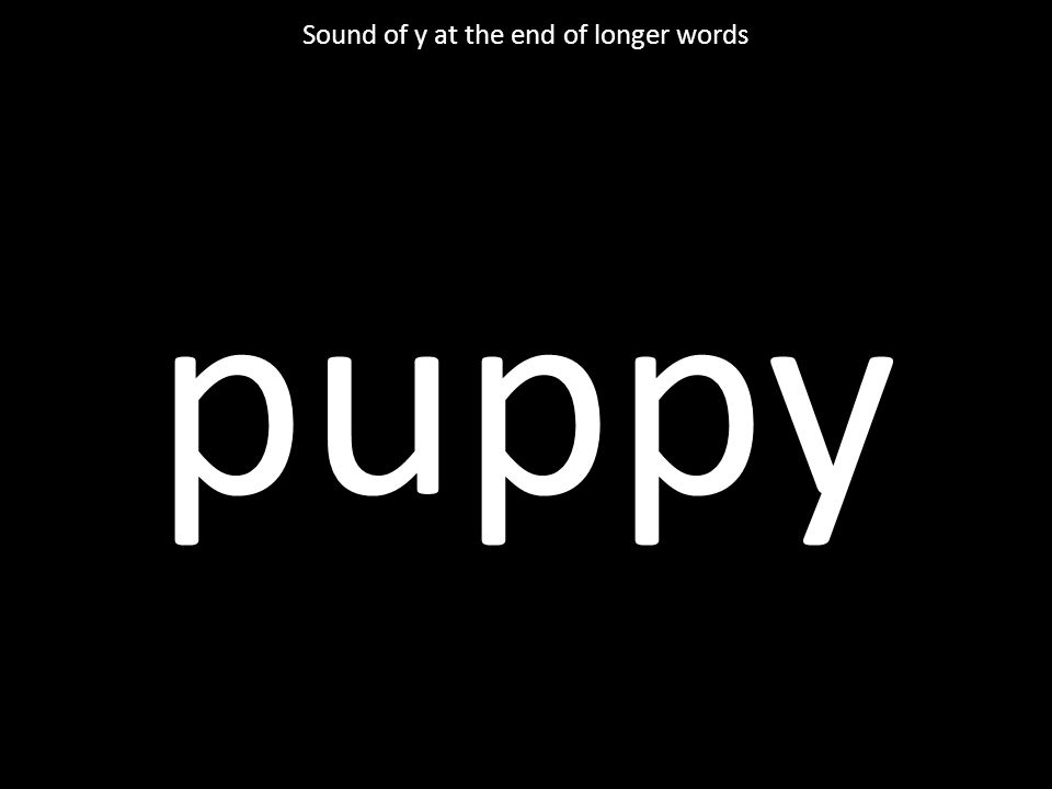 puppy Sound of y at the end of longer words
