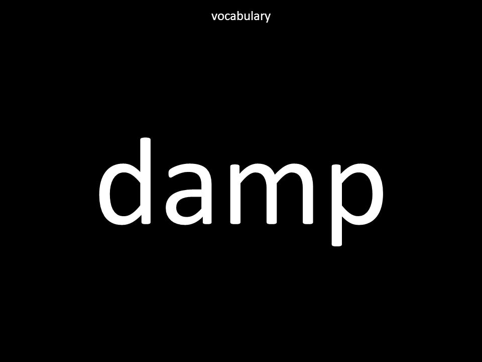 damp vocabulary