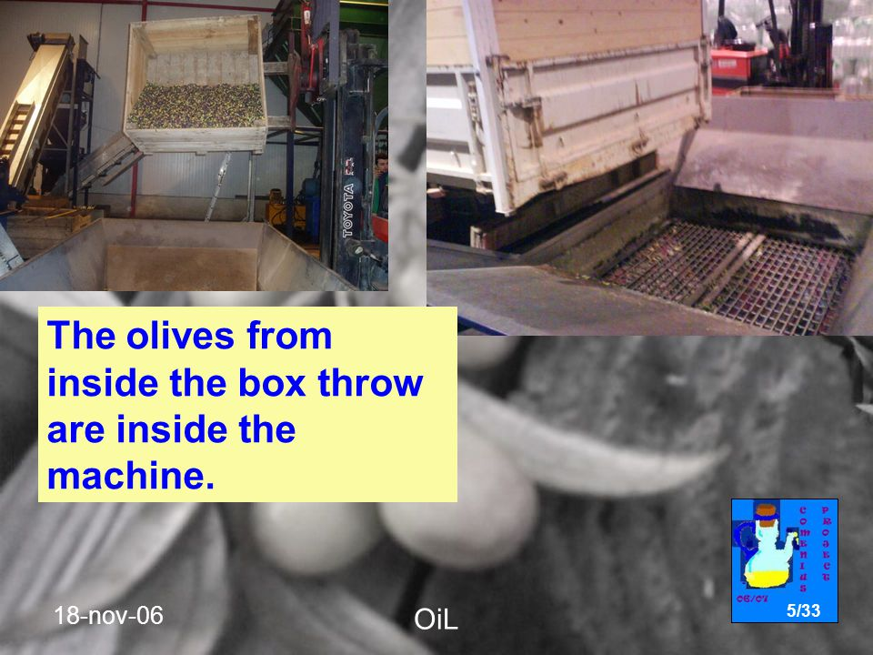 18-nov-06 OiL 5/33 The olives from inside the box throw are inside the machine.