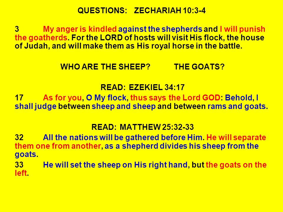QUESTIONS:ZECHARIAH 10:3-4 3My anger is kindled against the shepherds and I will punish the goatherds.