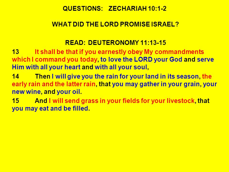 QUESTIONS:ZECHARIAH 10:1-2 WHAT DID THE LORD PROMISE ISRAEL.