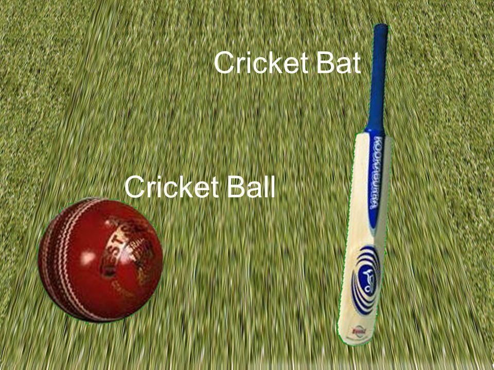 Cricket Bat Cricket Ball