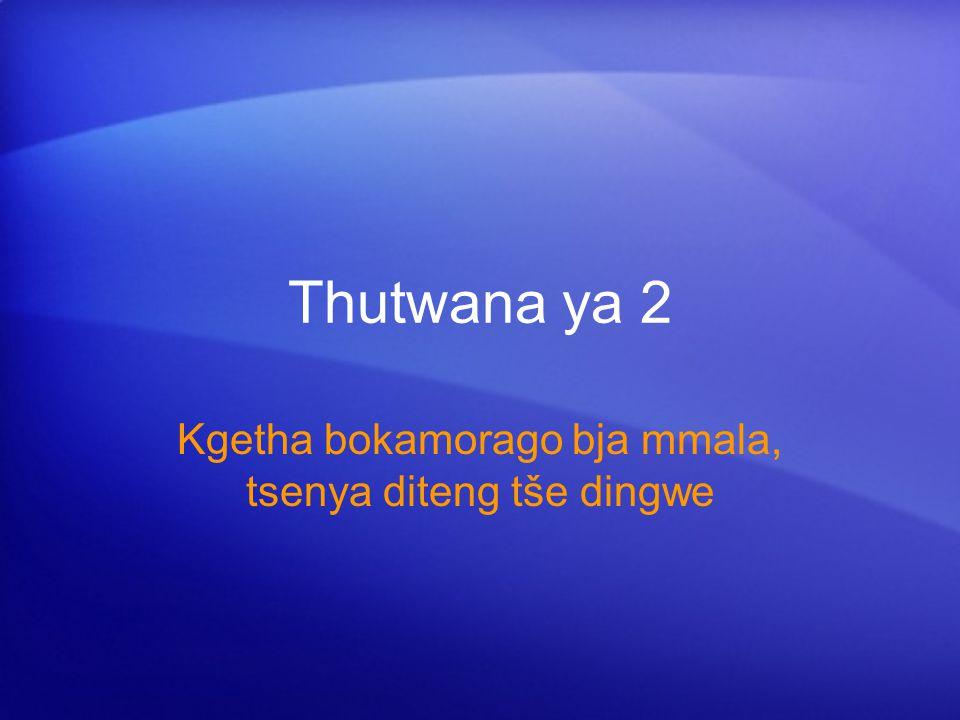 Thutwana ya 2 Kgetha bokamorago bja mmala, tsenya diteng tše dingwe