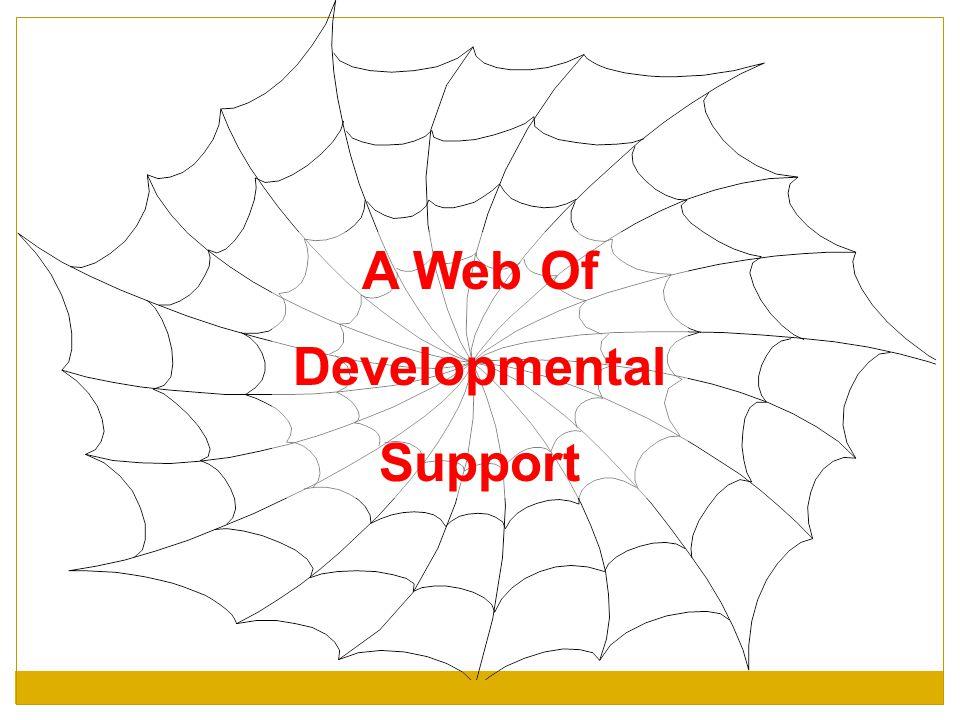 A Web Of Developmental Support