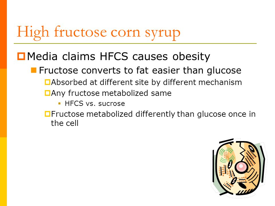High fructose corn syrup  Media claims HFCS causes obesity Fructose converts to fat easier than glucose  Absorbed at different site by different mec