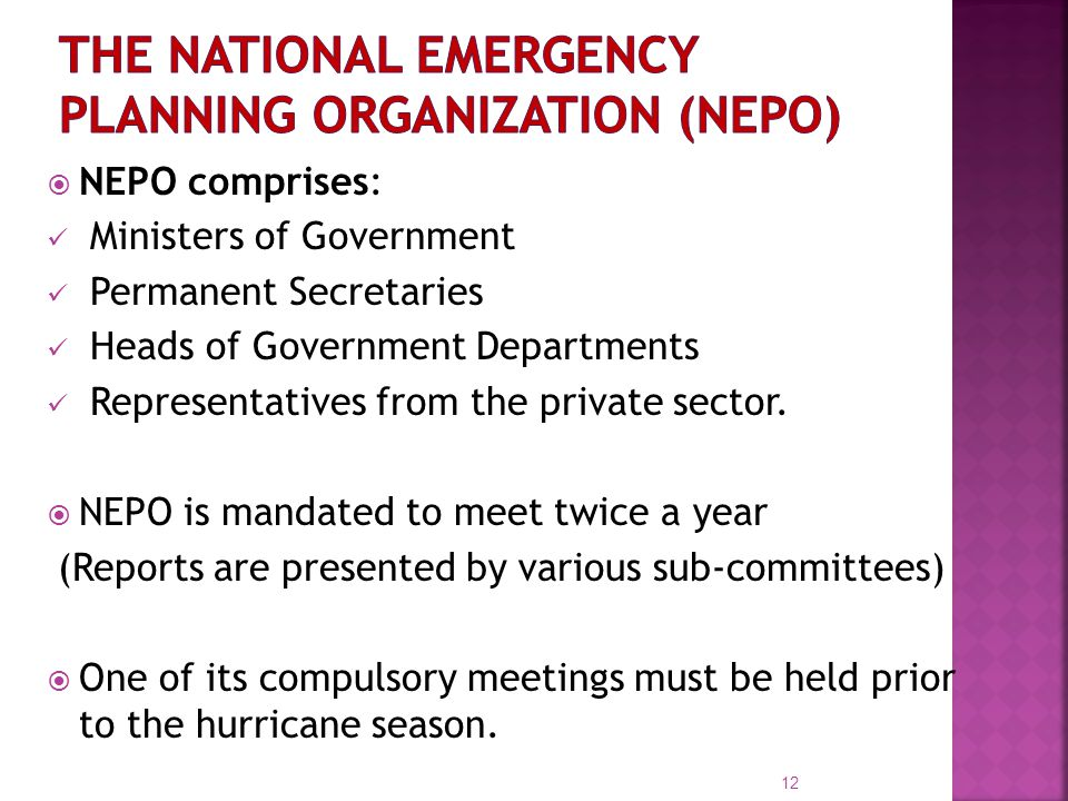  NEPO comprises: Ministers of Government Permanent Secretaries Heads of Government Departments Representatives from the private sector.