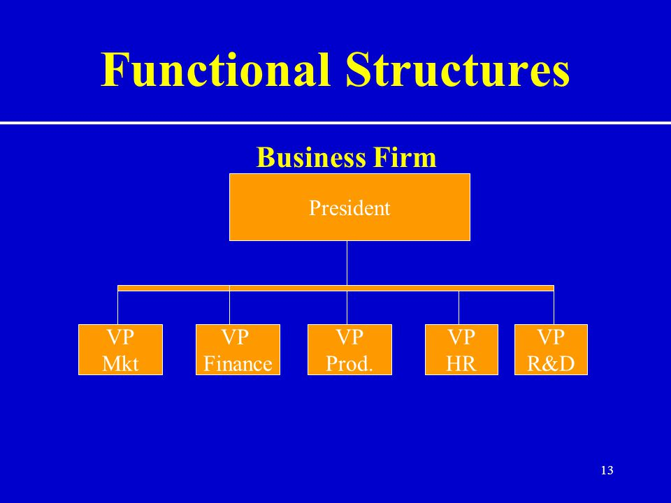 13 Functional Structures Business Firm President VP Mkt VP Finance VP Prod. VP HR VP R&D