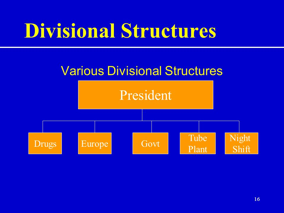 16 Divisional Structures Various Divisional Structures President DrugsEuropeGovt Tube Plant Night Shift
