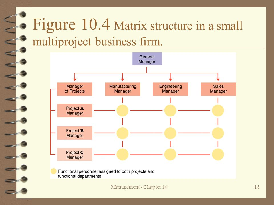 Management - Chapter 1018 Figure 10.4 Matrix structure in a small multiproject business firm.