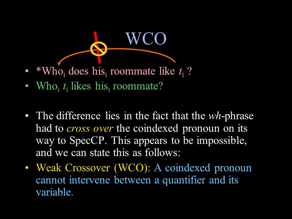 WCO *Who i does his i roommate like t i . Who i t i likes his i roommate.