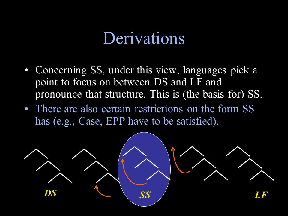 Derivations Concerning SS, under this view, languages pick a point to focus on between DS and LF and pronounce that structure. This is (the basis for)