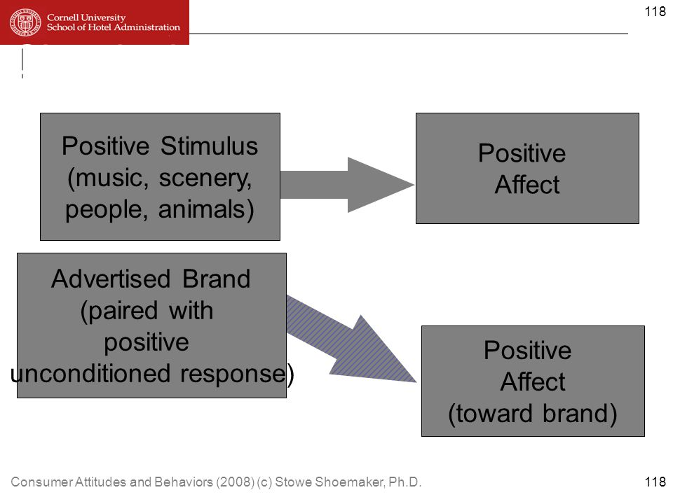 Consumer Attitudes and Behaviors (2008) (c) Stowe Shoemaker, Ph.D.118 Classical conditioning in advertising Positive Stimulus (music, scenery, people, animals) Advertised Brand (paired with positive unconditioned response) Positive Affect Positive Affect (toward brand) 118