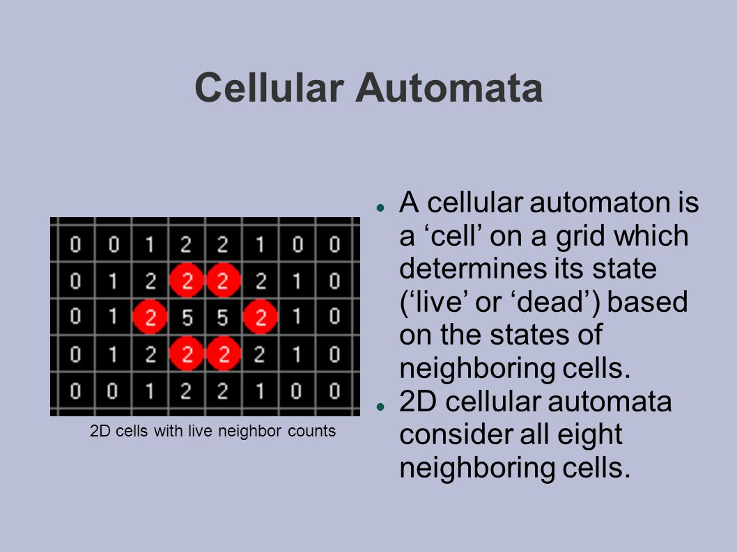 Cellular Automata A cellular automaton is a 'cell' on a grid which determines its state ('live' or 'dead') based on the states of neighboring cells.