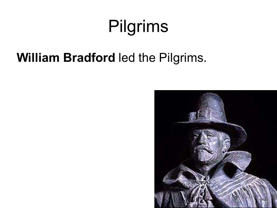 Pilgrims William Bradford led the Pilgrims.