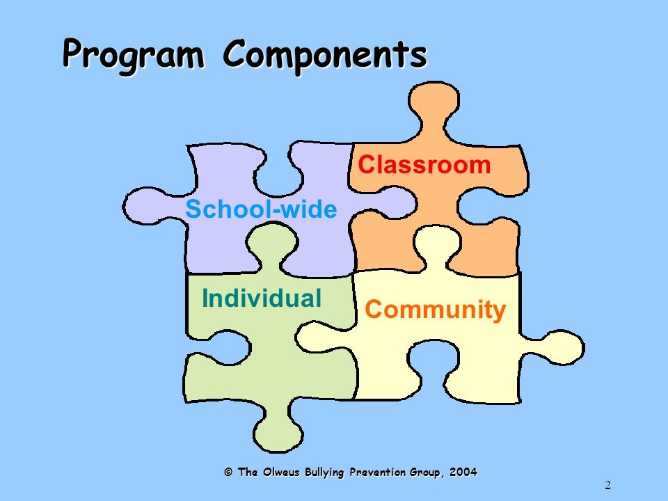 2 Program Components School-wide Individual Classroom Community © The Olweus Bullying Prevention Group, 2004